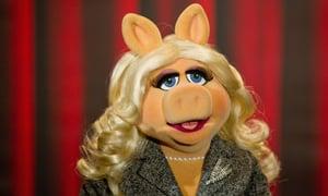 miss piggy now